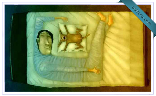 Геометрия сна