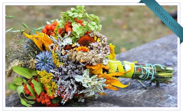Легенды про осенние цветы